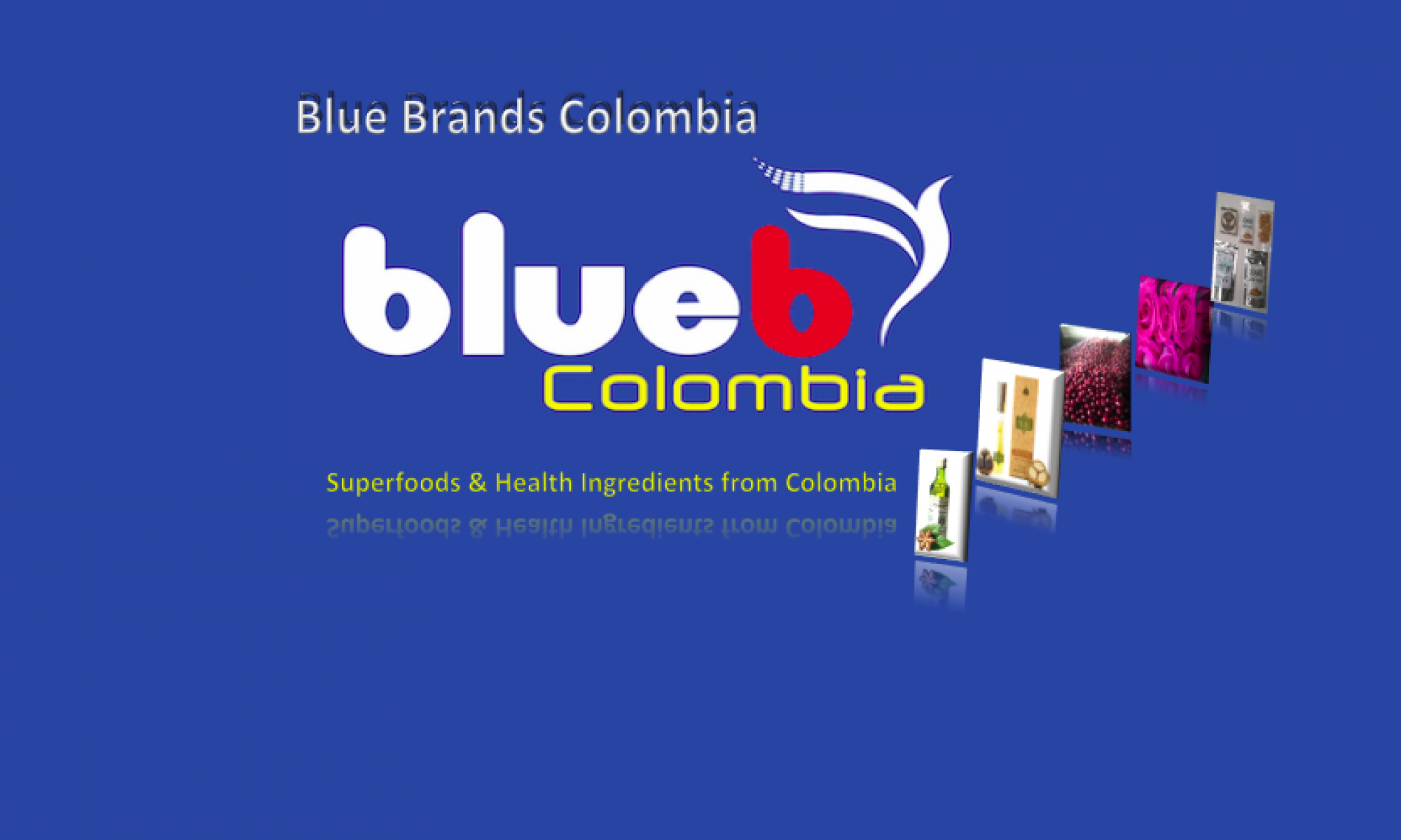 Blue Brands Colombia